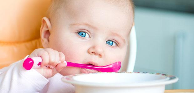 horario alimentação bebe 7 meses