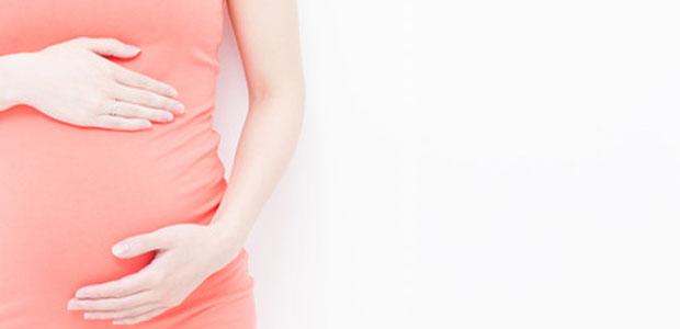 tamanho do feto com 8 semanas e 4 dias